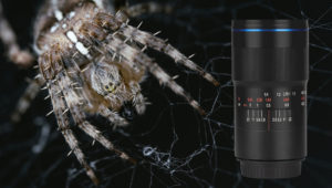 Fstoppers Reviews the Laowa 100mm f/2.8 2:1 Ultra Macro Lens