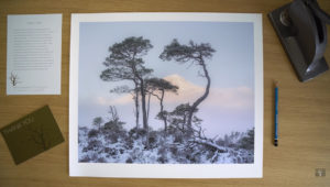 How to Present Your Prints as Professionally as Possible