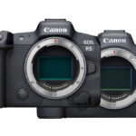 Canon Just Announced the EOS R6 and EOS R5: Here's How They Compare