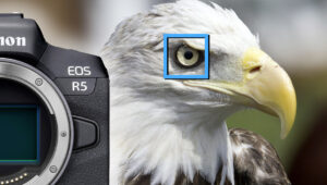 Is Eye Autofocus in the New Canon R5 and R6 Better Than Sony?