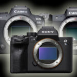 Canon R5 Versus R6 Versus Sony a7S III: Which Is the Best Camera for Vlogging?