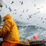 Series Documents the Dangerous, Fascinating Work of Commercial Fishermen on the Bering Sea