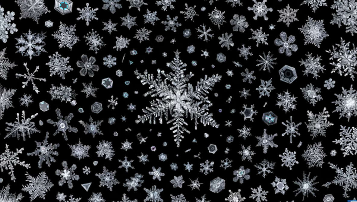How to Capture Beautiful Photographs of Snowflakes