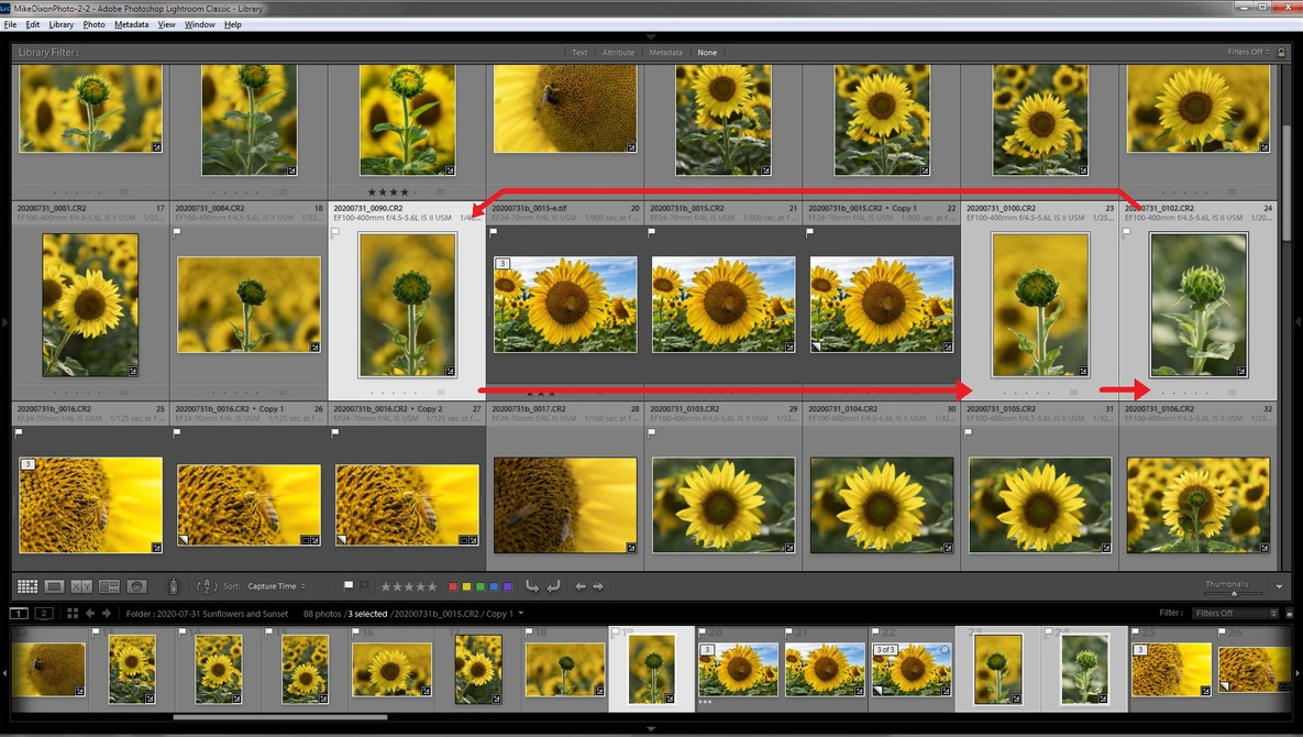 Three Lightroom Features That You Probably Don't Know About