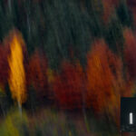 13 Tips for Better Fall Landscape Photography